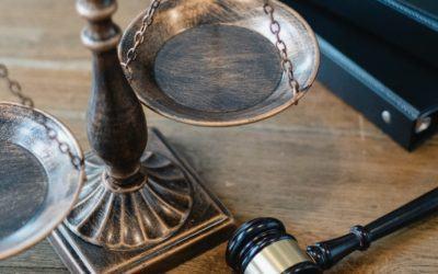 Apuntes de Postgrado – Potestad Organizatoria del Estado y Justicia Constitucional